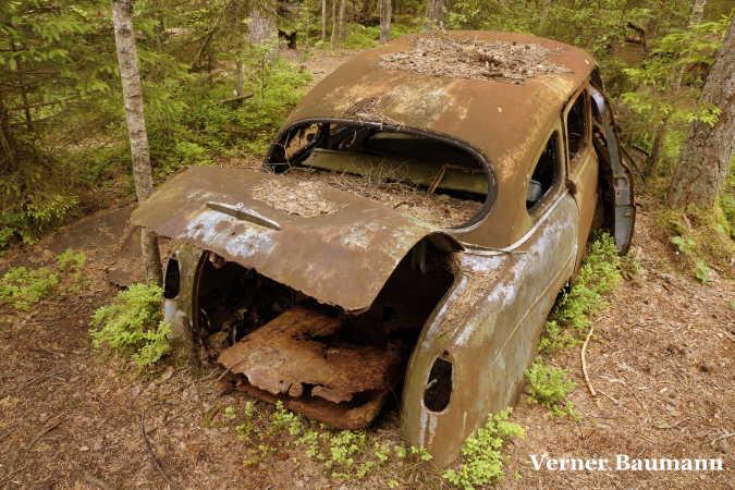 Orginal skidt , mos og rust på en gammel solidt bil