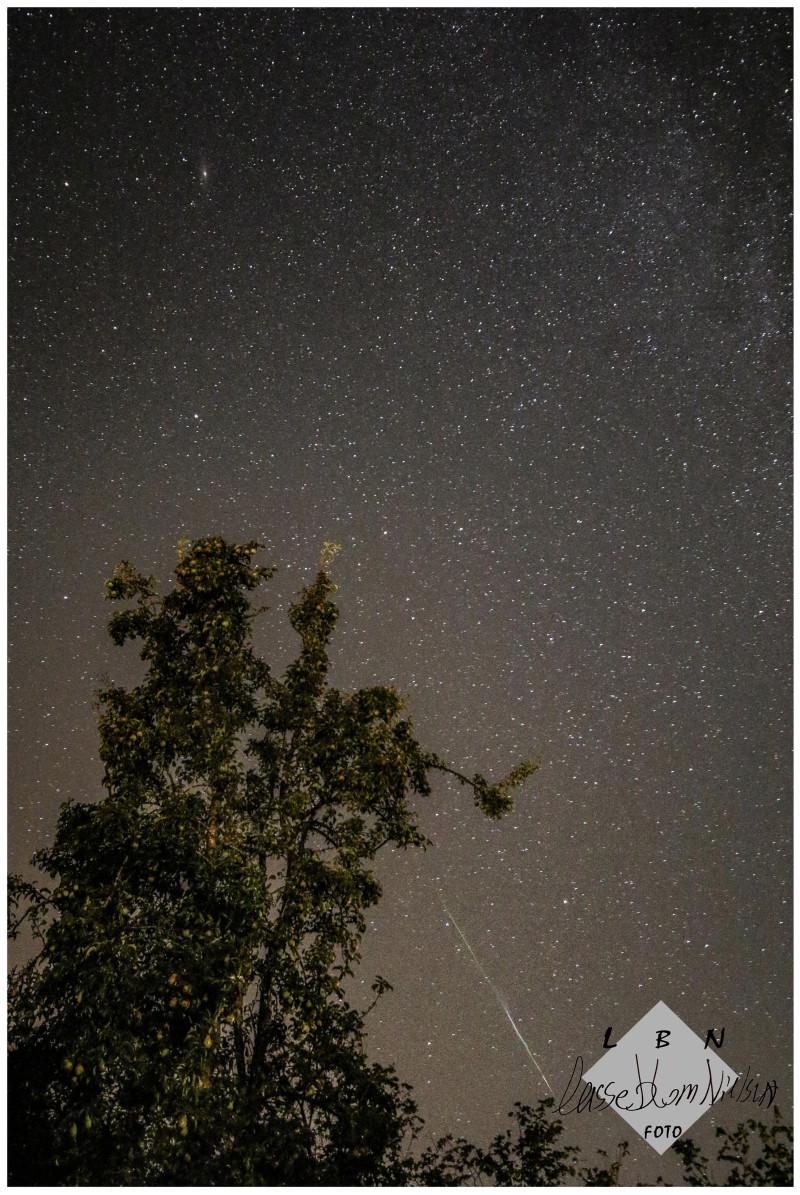 stjerne himmel